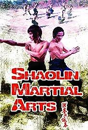 Artes marciales de Shaolin