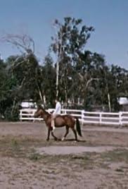 Al ver del ojo del caballo