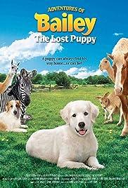 Las aventuras de Bailey: The Lost Cachorro