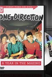 One Direction: Un año en la fabricación