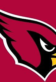 NFL Siga a su equipo: Cardenales