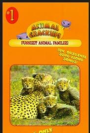 Animal Crackups: Funniest Animal Families