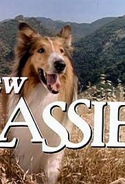 El Nuevo Lassie