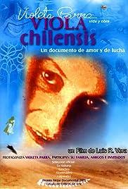 Viola Chilensis