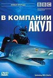 Shark Tank: nadar con los tiburones