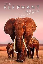 La reina elefante