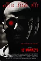 L'arm�e des 12 singes