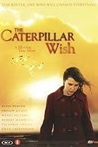 Caterpillar Wish