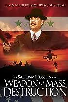 WMD: Weapon of Mass Destruction