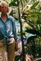 Julianes Sturz in den Dschungel