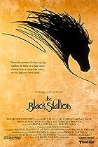 L'�talon noir