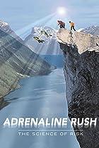 Adr�naline, la science du risque