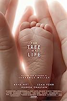 The tree of life - l'arbre de vie