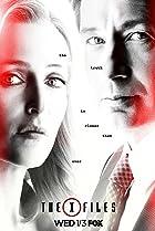 X Files: aux fronti�res du r�el