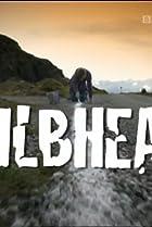 Eilbheas