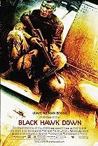 La chute du faucon noir